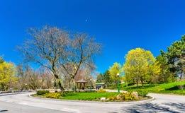 Sikt av den Niagara Falls delstatsparken i USA Arkivbilder