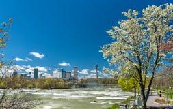Sikt av den Niagara Falls staden från USA-sidan Arkivbilder