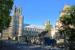 Sikt av den södra delen av domkyrkan från gallerigatan i Ely, Cambridgeshire, Norfolk, UK royaltyfri foto