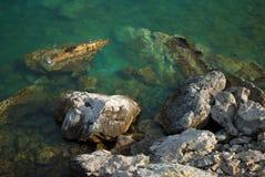 Sikt av den steniga havsbottnen Marin- bakgrund Arkivbild