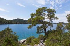 Sikt av den stora sjön av Mljet Fotografering för Bildbyråer
