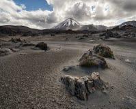 Sikt av den Tongariro nationalparken och Mt Ngauruho royaltyfria bilder