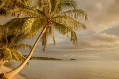 Sikt av den trevliga tropiska kusten under färgrik solnedgång Royaltyfri Fotografi