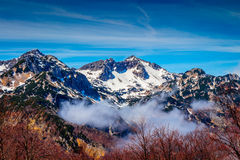 Sikt av den Triglav nationalparken Slovenien arkivbilder