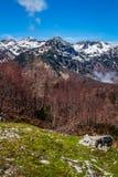 Sikt av den Triglav nationalparken Slovenien Royaltyfria Bilder