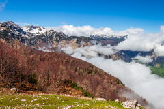 Sikt av den Triglav nationalparken Slovenien Arkivbild