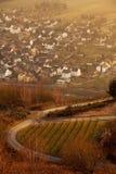 Sikt av den tyska byn längs floden Mosel royaltyfri fotografi