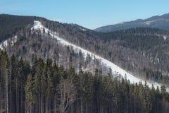 Sikt av den ukrainska semesterorten för skidalutning Royaltyfri Fotografi