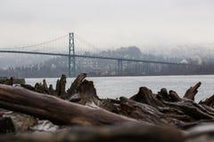 Sikt av den Vancouver bron från stranden med drivved royaltyfria foton