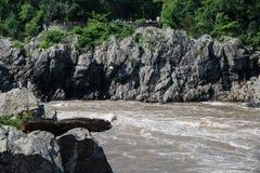 Sikt av den Virginia utkiken på Great Falls arkivbilder