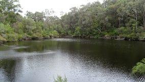 Sikt av den Walpole floden västra Australien i höst Arkivfoton