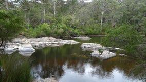 Sikt av den Walpole floden västra Australien i höst Arkivfoto