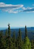 Sikt av Denali från Fairbanks Royaltyfria Foton