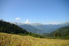 Sikt av det Caucasian området, bergen och skogarna av Abchazien Royaltyfri Bild
