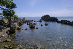 Sikt av det ensamma trädet och havet i landskapchanthaburi Royaltyfri Foto