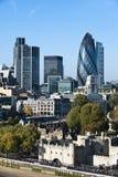 Sikt av det London tornet och ättiksgurkan Royaltyfria Bilder