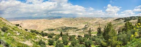 Sikt av det lovade landet som sett från monteringen Nebo i Jordanien royaltyfri fotografi