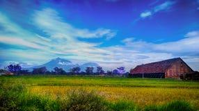 Sikt av det Merapi berget fotografering för bildbyråer
