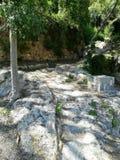 Sikt av det naturliga landskapet med en stenvägg i bakgrunden royaltyfria foton