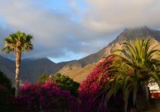 Sikt av det Roque del Conde berget tenerife Royaltyfri Foto