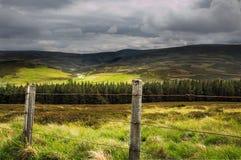 Sikt av det skotska Skotska högländernalandskapet i Skottland Royaltyfri Foto