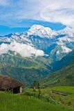 Sikt av det snöade bergmaximumet ovanför den gröna dalen i Himalayas, Nepal Royaltyfria Bilder