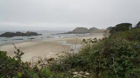Sikt av det Stillahavs- från huvudväg 101, på den Oregon kusten Arkivbild
