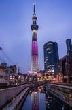 Sikt av det Tokyo himmelträdet Royaltyfria Bilder