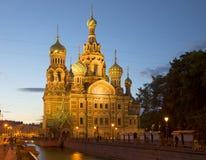 Sikt av domkyrkan av frälsaren på spilld vit natt för blod (uppståndelse av Kristus) St Petersburg Royaltyfria Foton