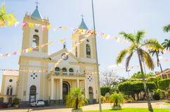 Sikt av domkyrkan Catedral Metropolitana Sagrado Coracao de Jesu Royaltyfri Foto