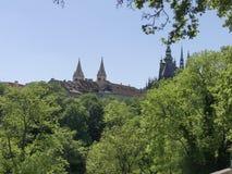 Sikt av domkyrkan av St Vita i Prague Fotografering för Bildbyråer