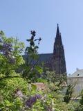 Sikt av domkyrkan av St Vita i Prague Royaltyfria Foton