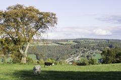 Sikt av Dovedale från Stanton Moor Royaltyfria Foton