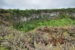 Sikt av en av de tvilling- vulkaniska kraterna i högländerna av Santa Cruz Royaltyfria Bilder