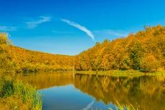 Sikt av en härlig sjö i höstskogen Fotografering för Bildbyråer