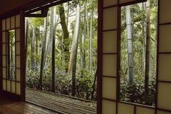 Sikt av en japansk skog fotografering för bildbyråer