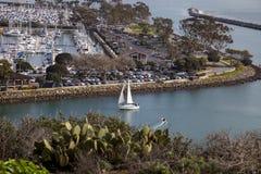 Sikt av en segelbåtsegling till och med Dana Point Harbor Arkivfoton