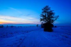 Sikt av en solnedgång över winterly ett landskap arkivbilder