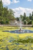 Sikt av en springbrunn i Hyde Park, London Arkivbilder