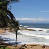 Sikt av en strand i Kovalam Arkivfoto