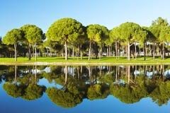 Sikt av ett damm på en golfbana Royaltyfria Bilder