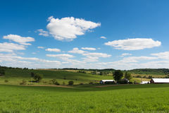Sikt av ett fält i Illinois landssida Fotografering för Bildbyråer
