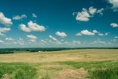 Sikt av ett fält i Illinois landssida Royaltyfria Foton