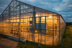Sikt av ett glänsande växthus från sidan, geotermiskt upphettat royaltyfria bilder