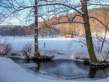 Sikt av ett vinterlandskap i den Thuringian skogen royaltyfri fotografi