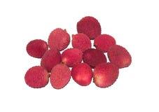 Sikt av exotisk frukt Fotografering för Bildbyråer