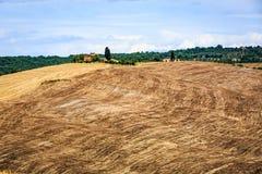 Sikt av fält i den tuscan regionen Val D Orcia, Italien arkivbilder