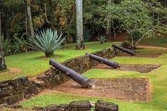 Sikt av fästningkanoner under tropiskt landskap på molnig dag nära Paraty Arkivbilder