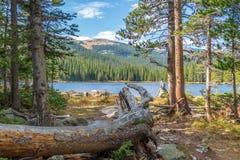 Sikt av Finch Lake och Rocky Mountains i bakgrund arkivbild