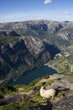 Sikt av fjorden i Norge Royaltyfri Foto